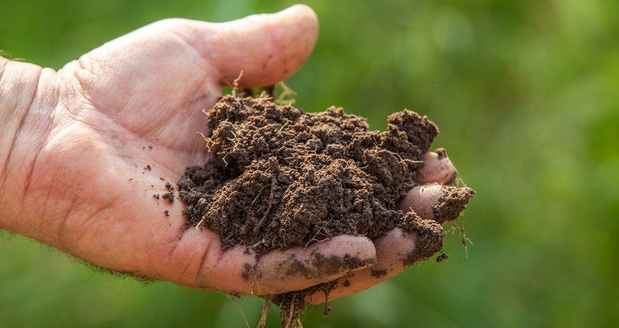 prodotti agrinova agricoltura